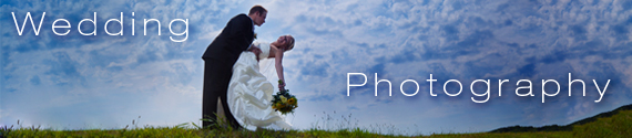 Wedding Photography by Photographer Nick Schale Pricing and Demos
